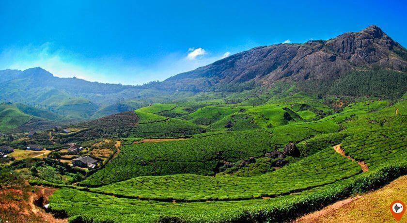 kerala tea valley