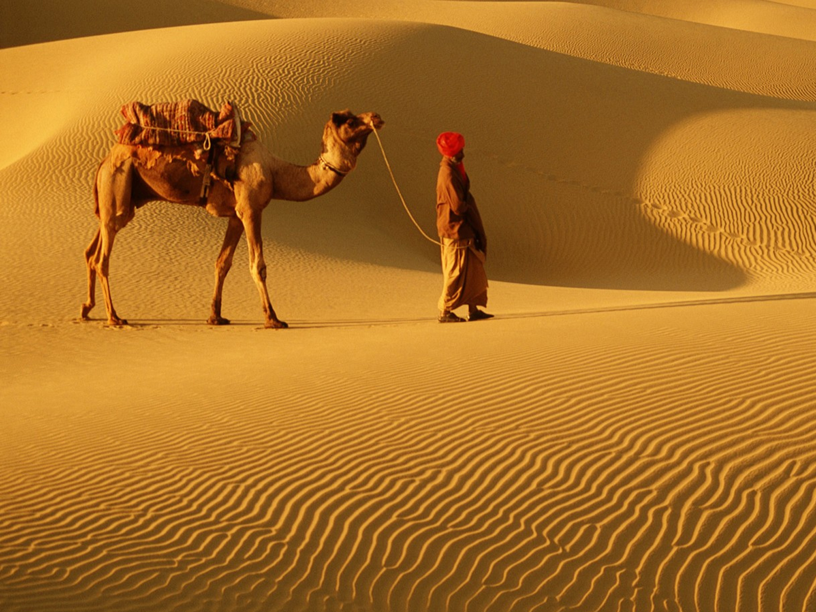 List Of Synonyms And Antonyms Of The Word India Visit Rajasthan