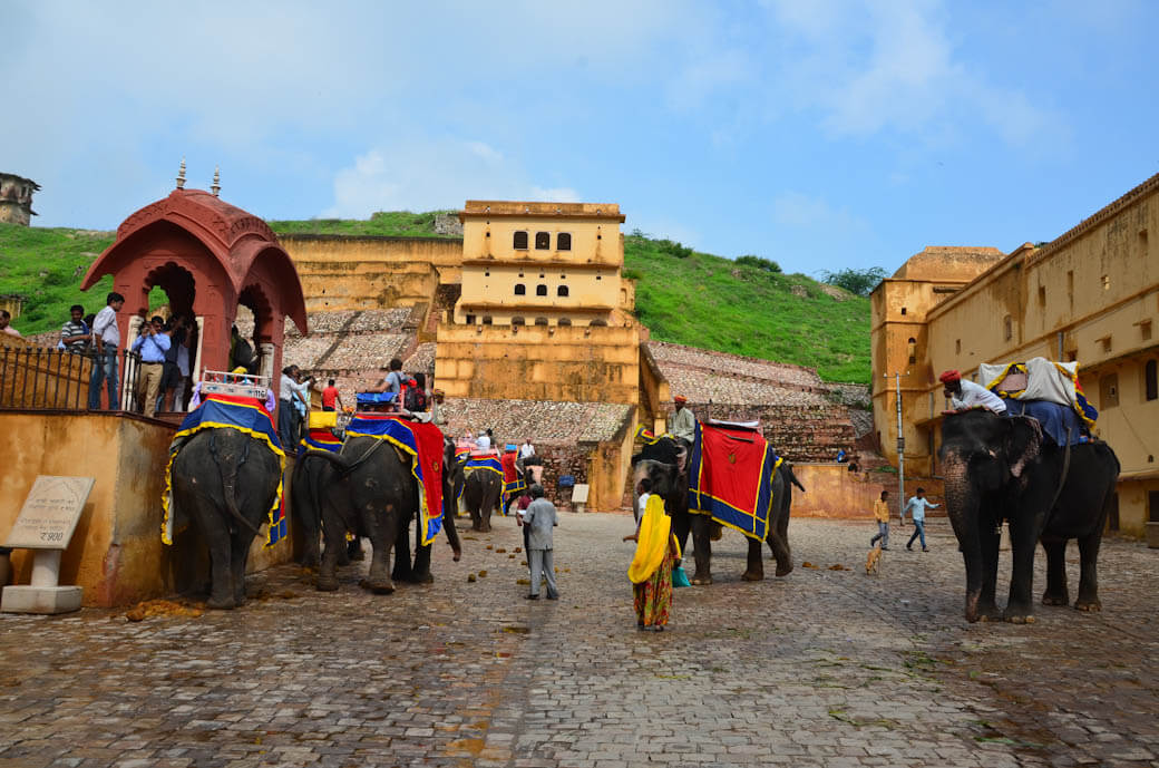 amber fort elephant ride jaipur india
