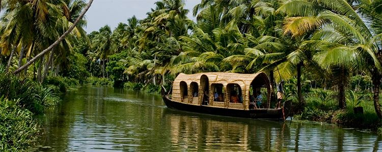 Tranquil Backwaters