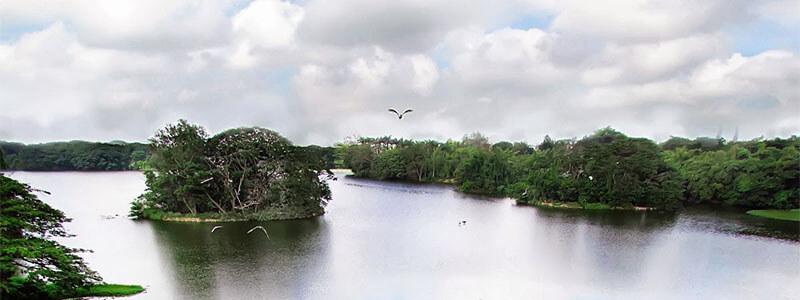 karanji-lake mysore
