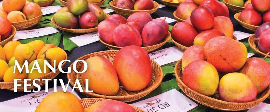 Mango Festival delhi