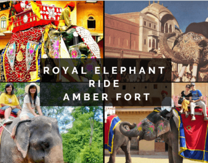 Riding Elephants In Amber Fort