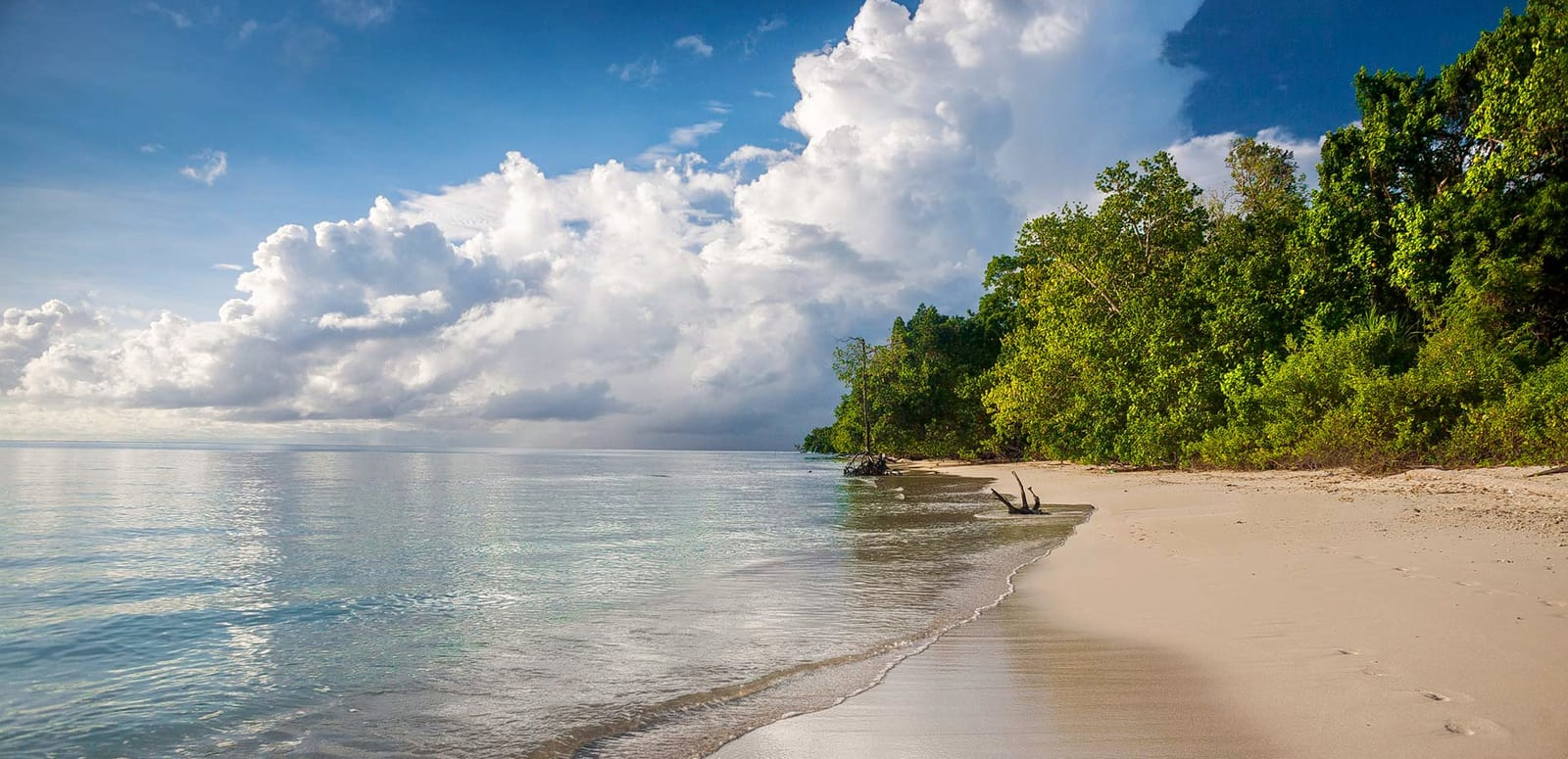 Andaman And Nicobar Islands Tour Package by Indiator